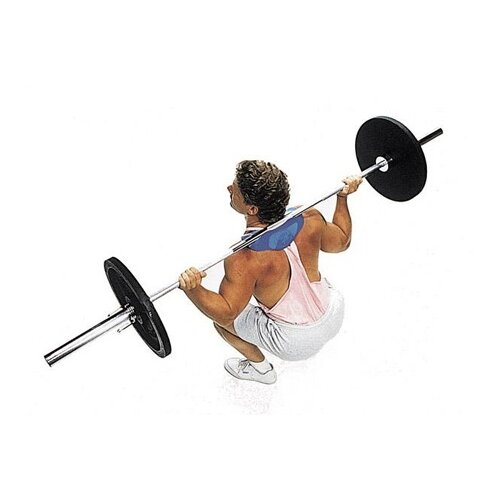 Body Solid Manta Ray Squat Attachment