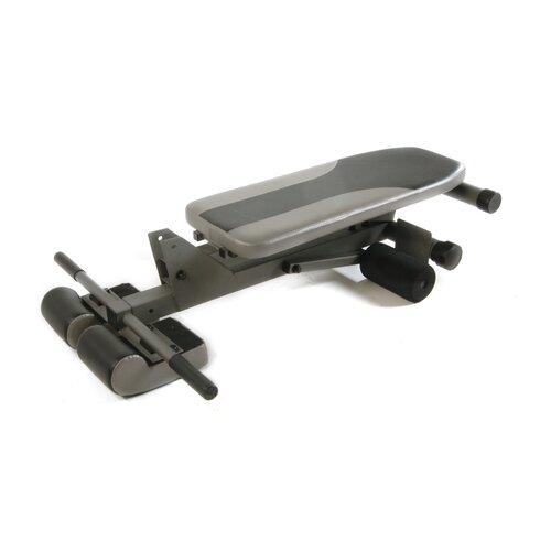 Stamina Decline Ab / Hyperextension Bench
