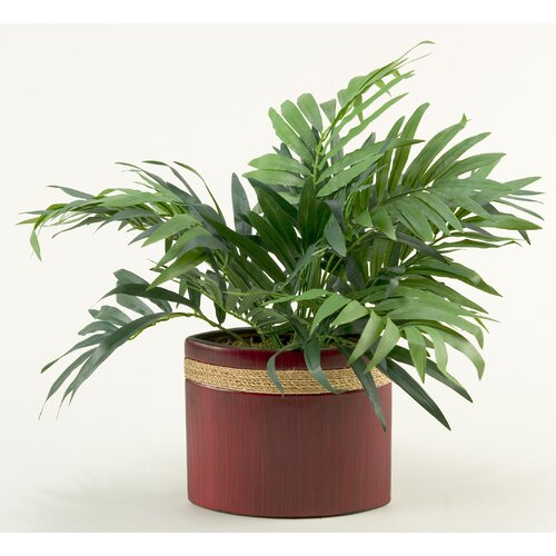 D & W Silks Parlor Palm Floor Plant in Planter
