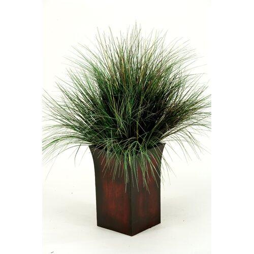 D & W Silks Onion Grass in Square Metal Planter