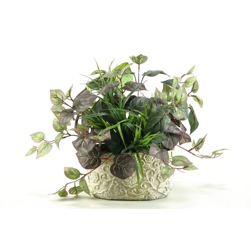 D & W Silks Oxalis Ivy Desk Top Plant in Pot