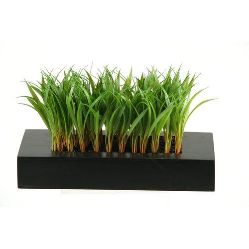 D & W Silks Wild Grass in Rectangular Wood Planter