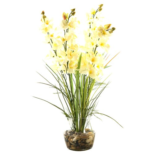 D & W Silks Orchids with River Grass in Glass Dish