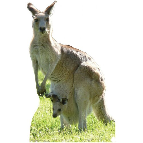 Advanced Graphics Animals Kangaroo Cardboard Stand-Up