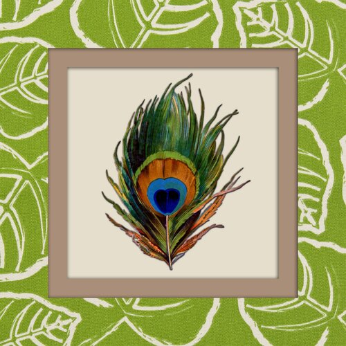 Peacock Feather Graphic Art on Canvas