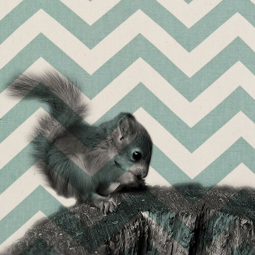 Baby Squirrel Graphic Art on Canvas in Black