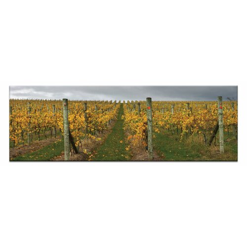 De-vine by Andrew Brown Photographic Print on Canvas