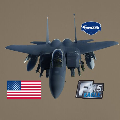 Military F-15 Wall Decal