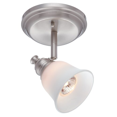Alcee One Light Wall/Ceiling Lamp in Polished Steel
