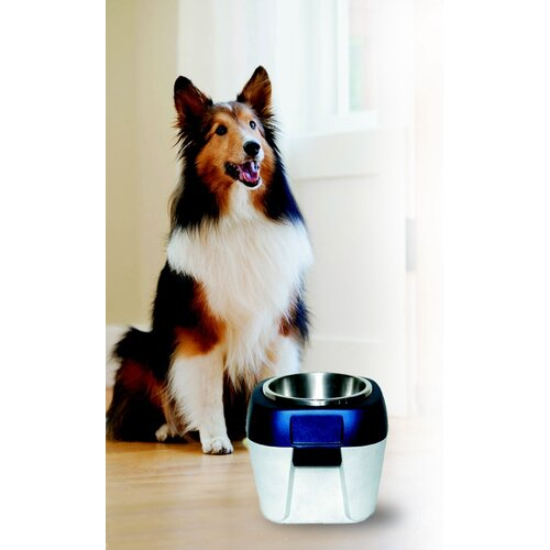 Molor Products EZ Store Raised Dog Bowl