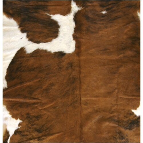 Surya Duke Brown/White Rug