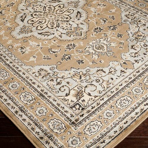 Surya Paramount Praline Light Gray Rug Amp Reviews Wayfair