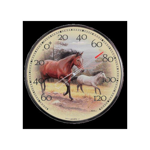 Chaney Horse Thermometer
