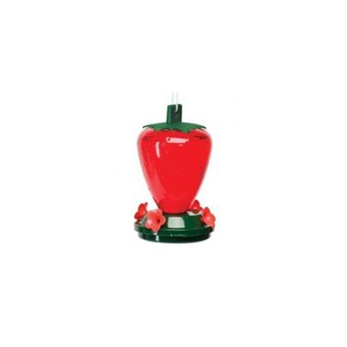 Heritage Farms Strawberry Decorative Hummingbird Feeder