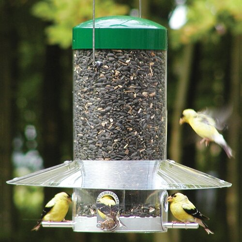Classic Hanging Tube Bird Feeder