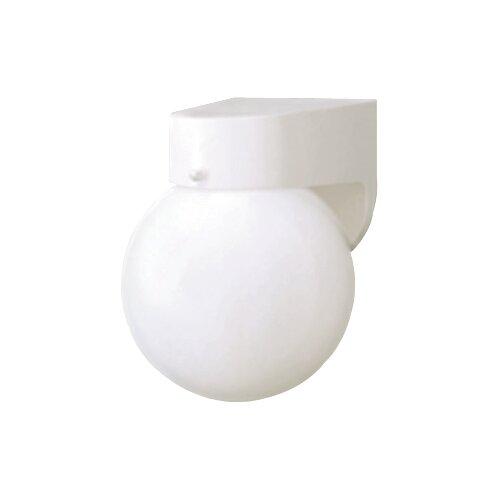 Thomas Lighting Plastic Outdoor Globe 1 Light Wall Sconce & Reviews Wayfair