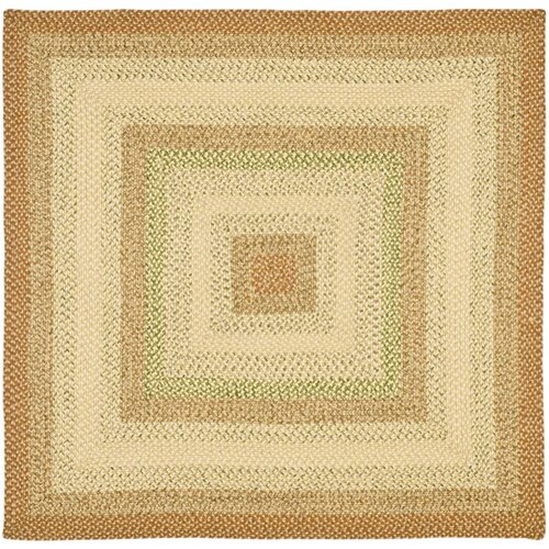 Safavieh Braided Rust/Multi Rug