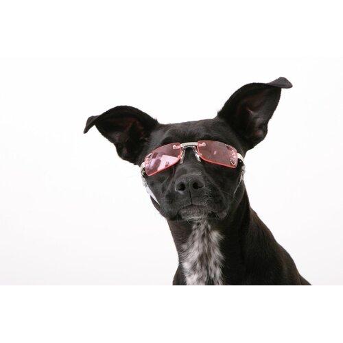 K9 Optix® Dog Sunglasses in Pink