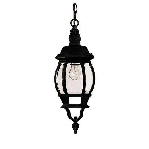 Wildon Home ® 1 Light Outdoor Hanging Lantern