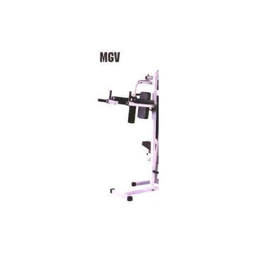 Multisports Optional Vertical Knee Raise Station Gym