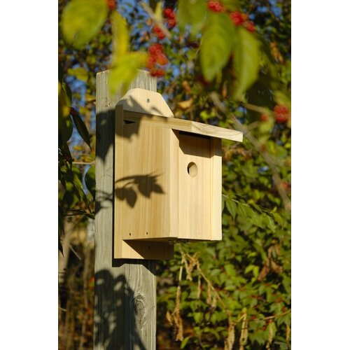 Heartwood Chickadee Joy Box Bird House