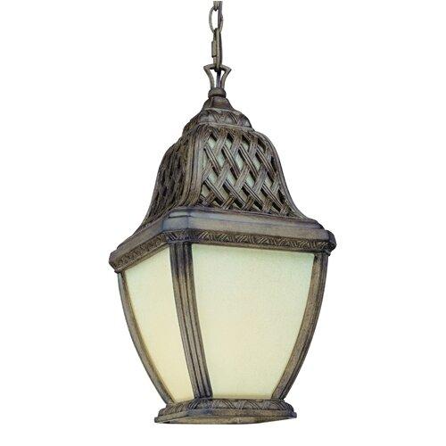 Troy Lighting Biscayne 1 Light Hanging Lantern in Biscayne