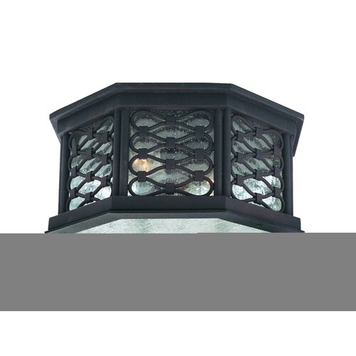 Troy Lighting Los Olivos 2 Light Outdoor Flush Mount