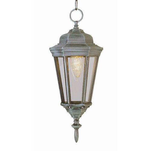 TransGlobe Lighting Outdoor 1 Light Hanging Lantern