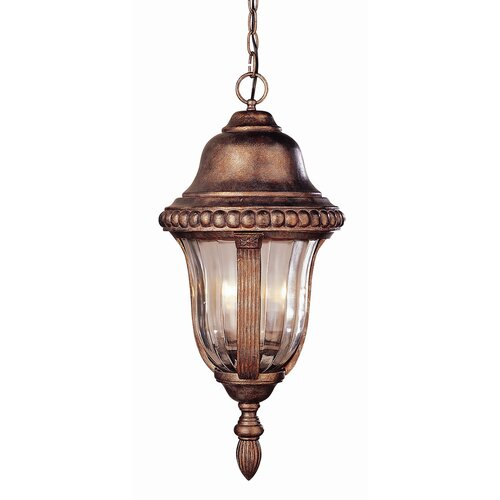 TransGlobe Lighting Outdoor 4 Light Hanging Lantern