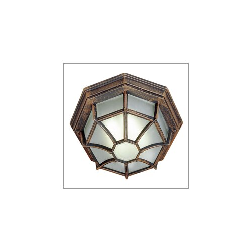 TransGlobe Lighting Outdoor 1 Light Fluorescent Flush Mount