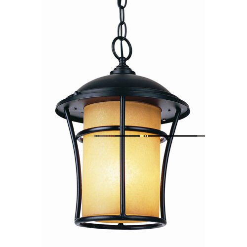 TransGlobe Lighting 1 Light Outdoor Hanging Lantern
