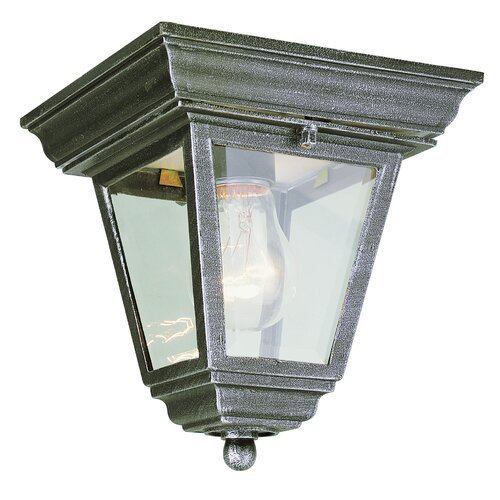 TransGlobe Lighting Outdoor 1 Light Flush Mount