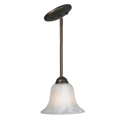 Golden Lighting Multi Family 1 Light Mini Pendant