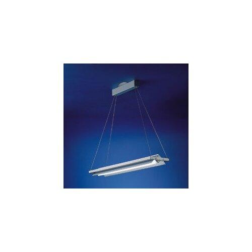 Zaneen Lighting Loft Fluorescent Ceiling Pendant
