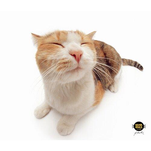 Allsop Pet Me Cat Mouse Pad