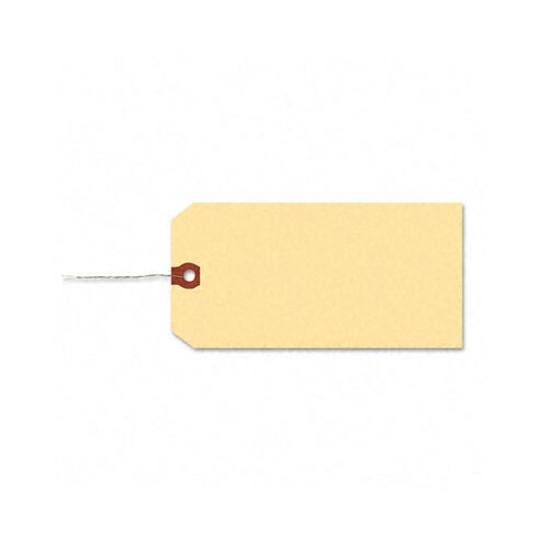 Avery Consumer Products Double Wire Shipping Tags, 6 1/4 X 3 1/8 (1,000/Box)