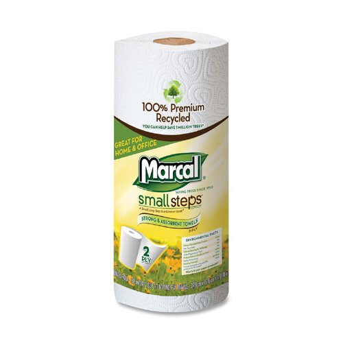 Small Steps 100% Premium Recycled Roll Towels, 60 Sheets/Roll, 15/Carton
