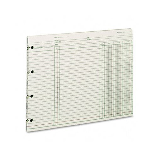 Wilson Jones Accounting, 9-1/4 X 11-7/8, 100 Loose Sheets/Pack