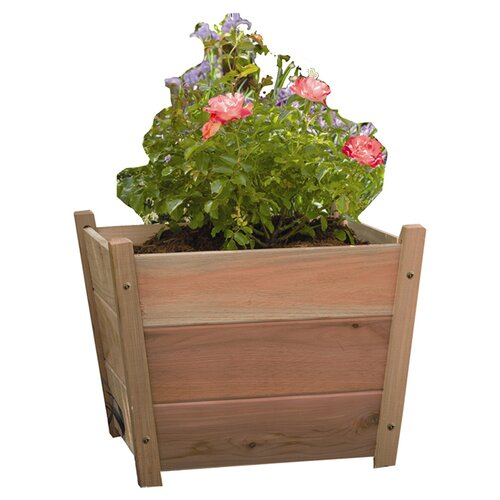 Phat Tommy Alta Square Planter