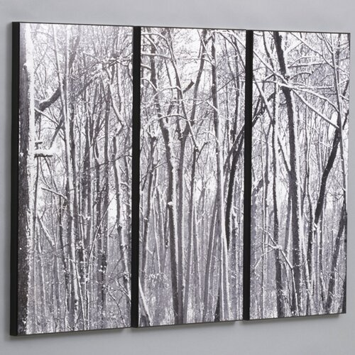 Wilson Studios Snow Covered Woods 3 Piece Framed Photographic Print Set