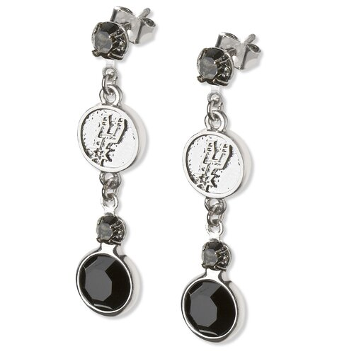 LogoArt® NBA Logo Crystal Earrings