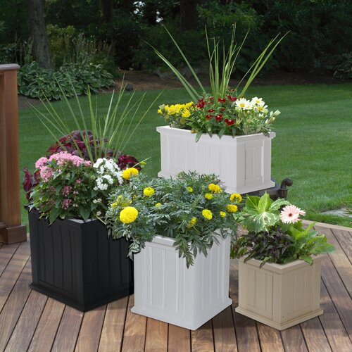 Mayne Inc Cape Cod Patio Planter Amp Reviews Wayfair