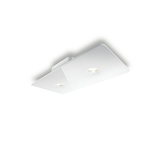 Philips Consumer Luminaire 2 Light Semi Flush Mount