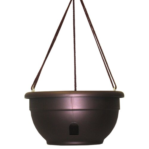 Apollo Plastics Self Watering Hanging Planter Reviews