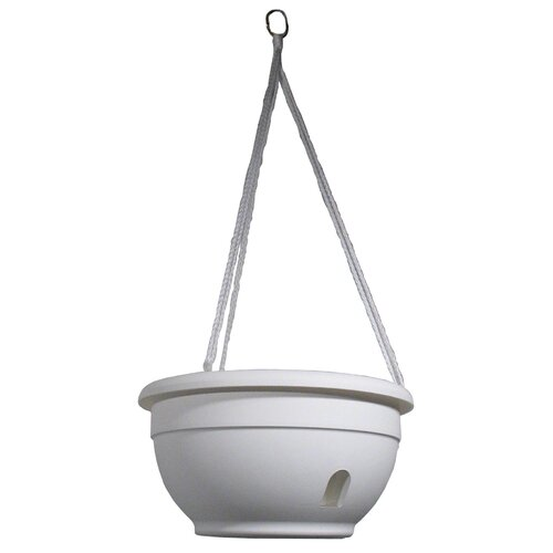 Apollo Plastics Self-Watering Hanging Planter