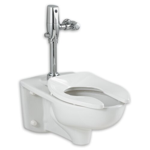 Afwall Ada Retrofit Universal Bowl Elongated Toilet Seat