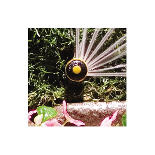 Rainbird Quarter Circle Spray Pop Up Mini Rotor