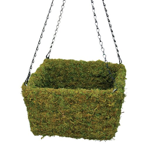 Handcrafted Square Hanging Planter (Set of 3)