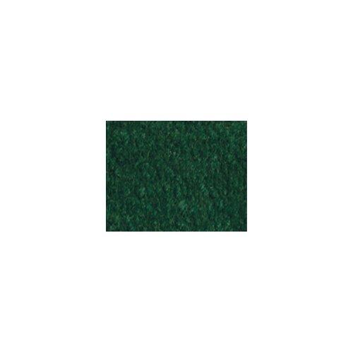 Carpets for Kids Solid Mt. Shasta Forest Green Kids Rug