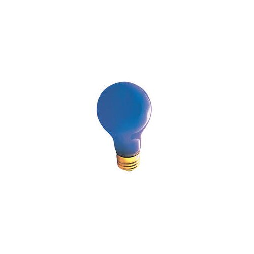 Bulbrite Industries 60W 120-Volt Incandescent Light Bulb